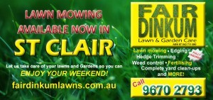 lawn mowing st clair flyer